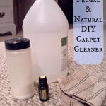 Frugal Homemade Carpet Cleaner