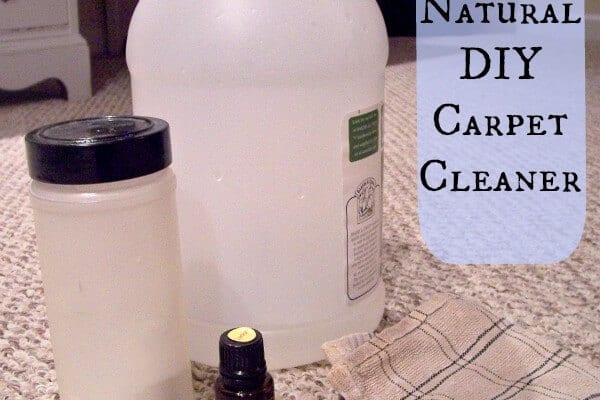 Frugal Homemade Carpet Cleaner