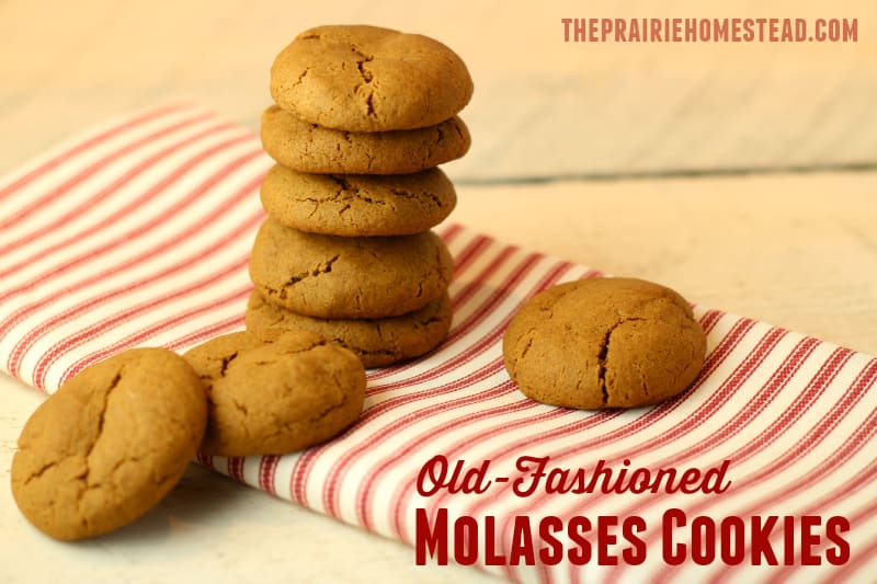 recipe: molasses crinkles recipe butter [12]