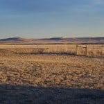 Prairie Scenes: A January Afternoon