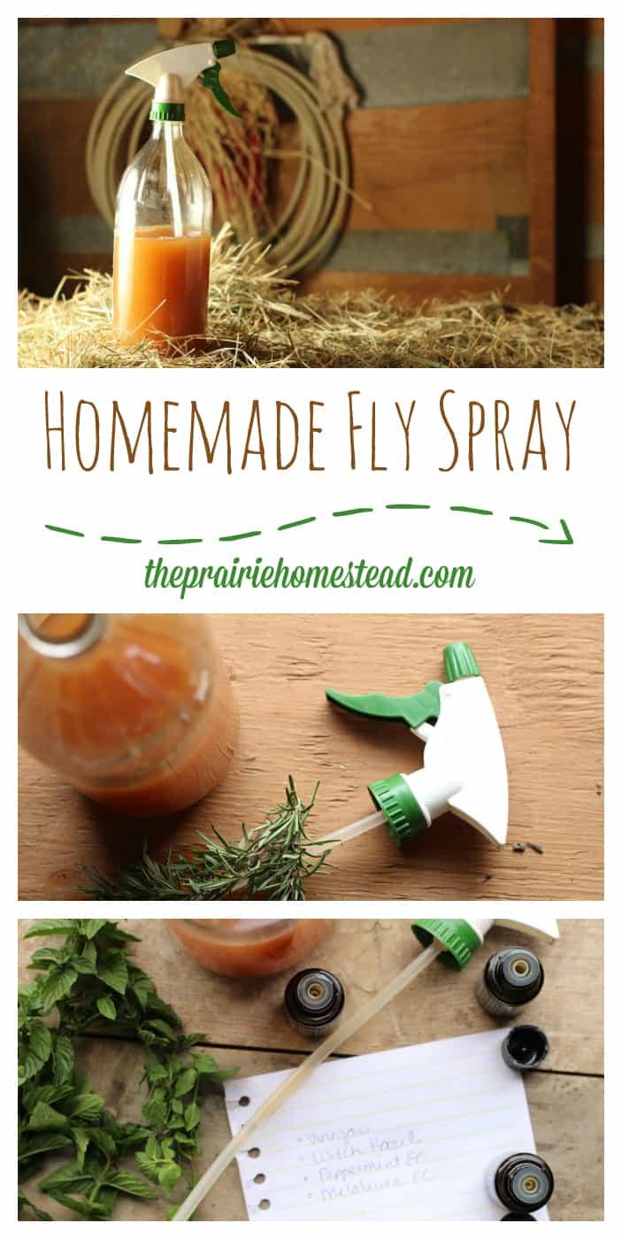Homemade Fly Spray Recipe | The Prairie