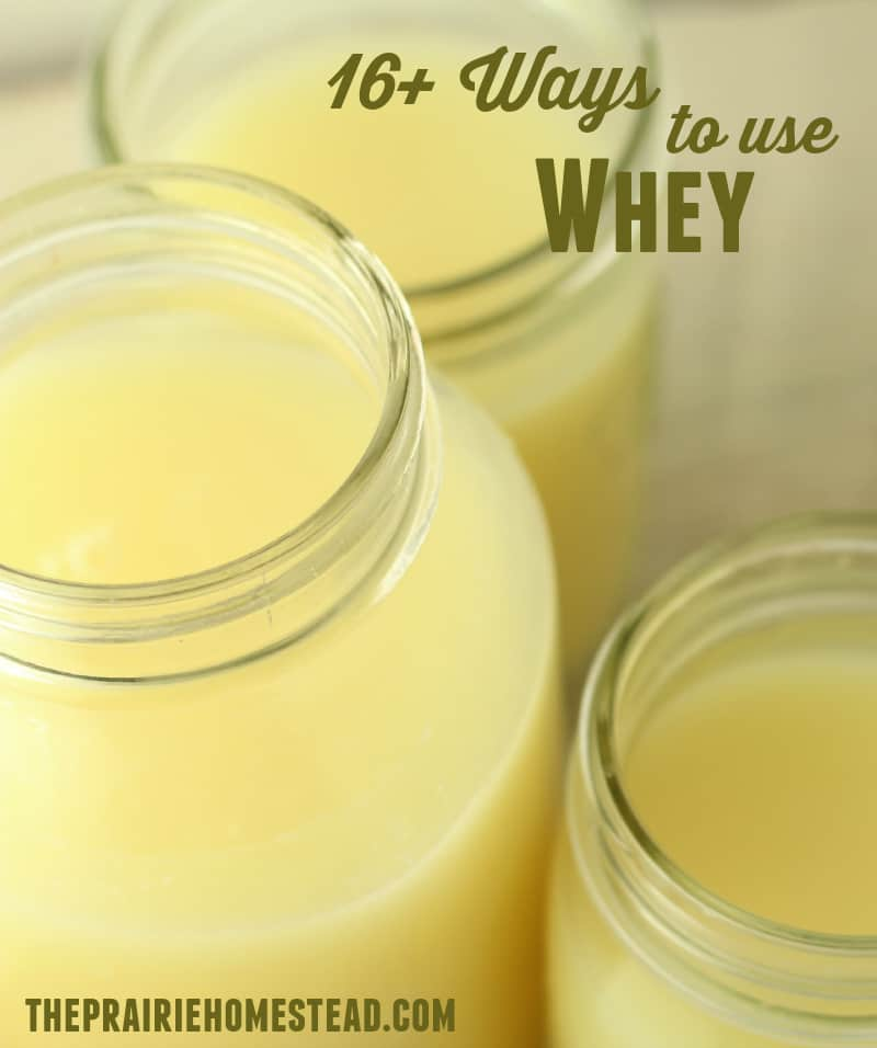 uses for whey