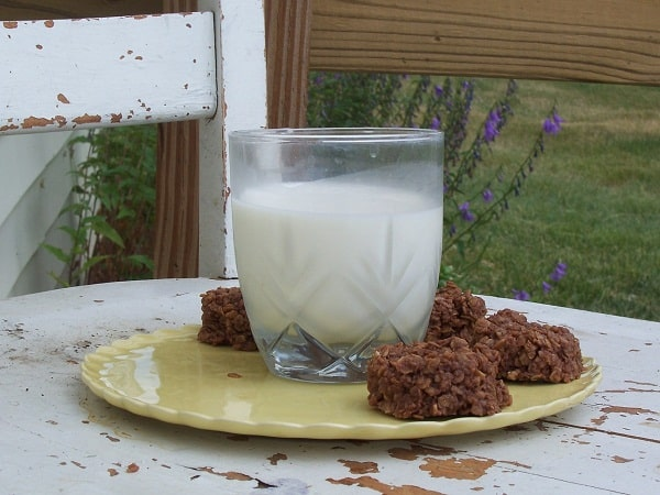 sugar-free, dairy-free no bake cookies
