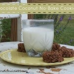 Chocolate Coconut No-Bake Cookies (Dairy-Free)