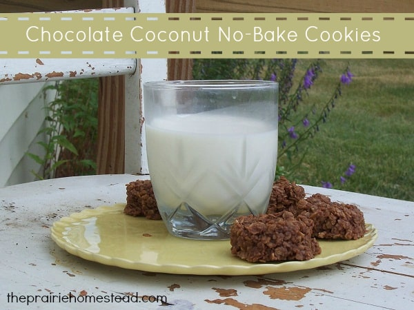 chocolate coconut no bake cookies