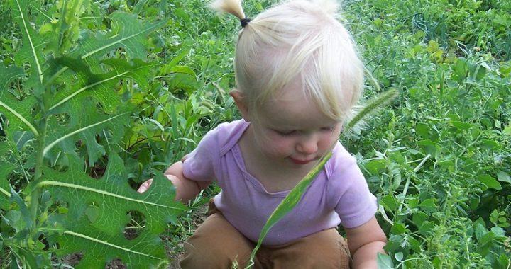 Don't Take it for Granted: Raising Rural Kids