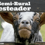 How to Be a (Semi-Rural) Homesteader