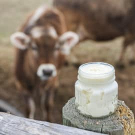 homemade udder balm recipe