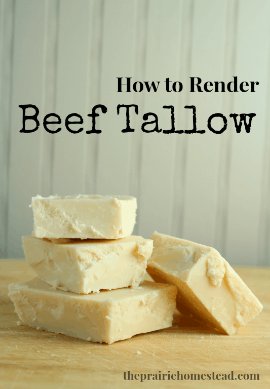 how to render tallow