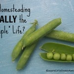 "Is Homesteading Really the ""Simple Life""?"