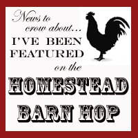 Done With Homesteading!