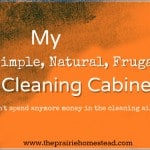 My {Simple, Natural, Frugal} Cleaning Cabinet