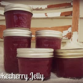 chokecherry jelly recipe