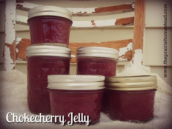 chokecherry jelly recipe