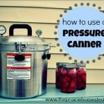 How to Use a Pressure Canner – Part 1