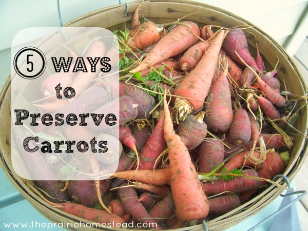 How to Preserve Carrots