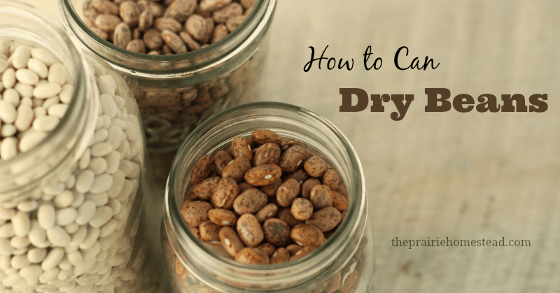 how to can dry beans