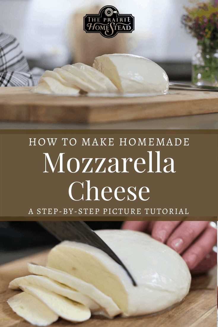 How To Make Homemade Mozzarella Cheese