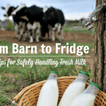 From Barn to Fridge: 6 Tips for Safely Handling Raw Milk