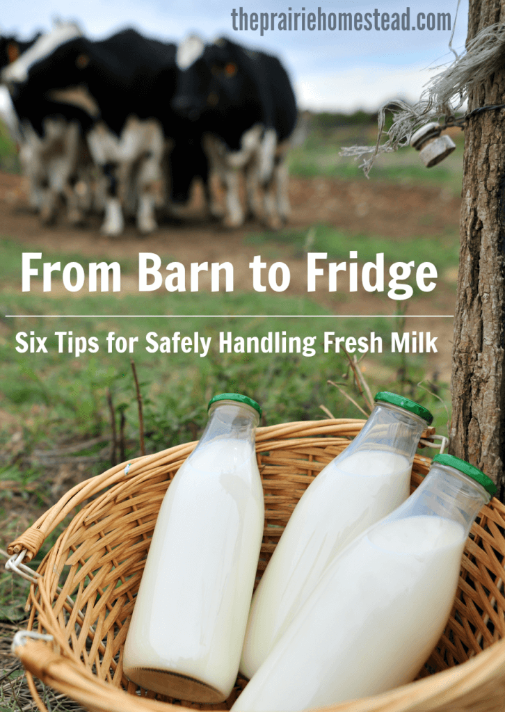 raw milk safety