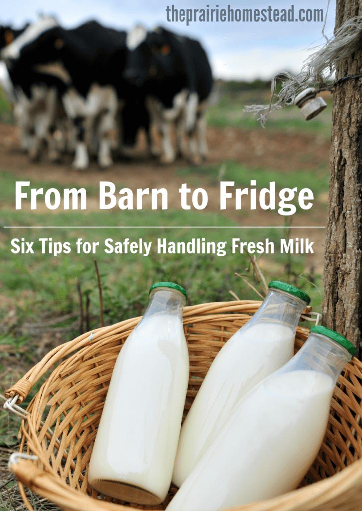 raw milk safety