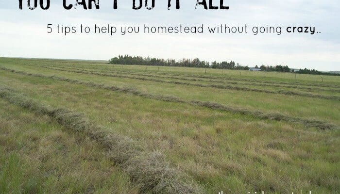 You Can't Do it All- 5 Tips for Staying Sane as You Homestead