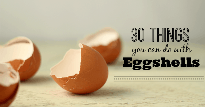 30+ Things to Do with Eggss • The Prairie Homestead on