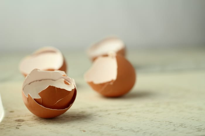 30 Things To Do With Eggshells The Prairie Homestead