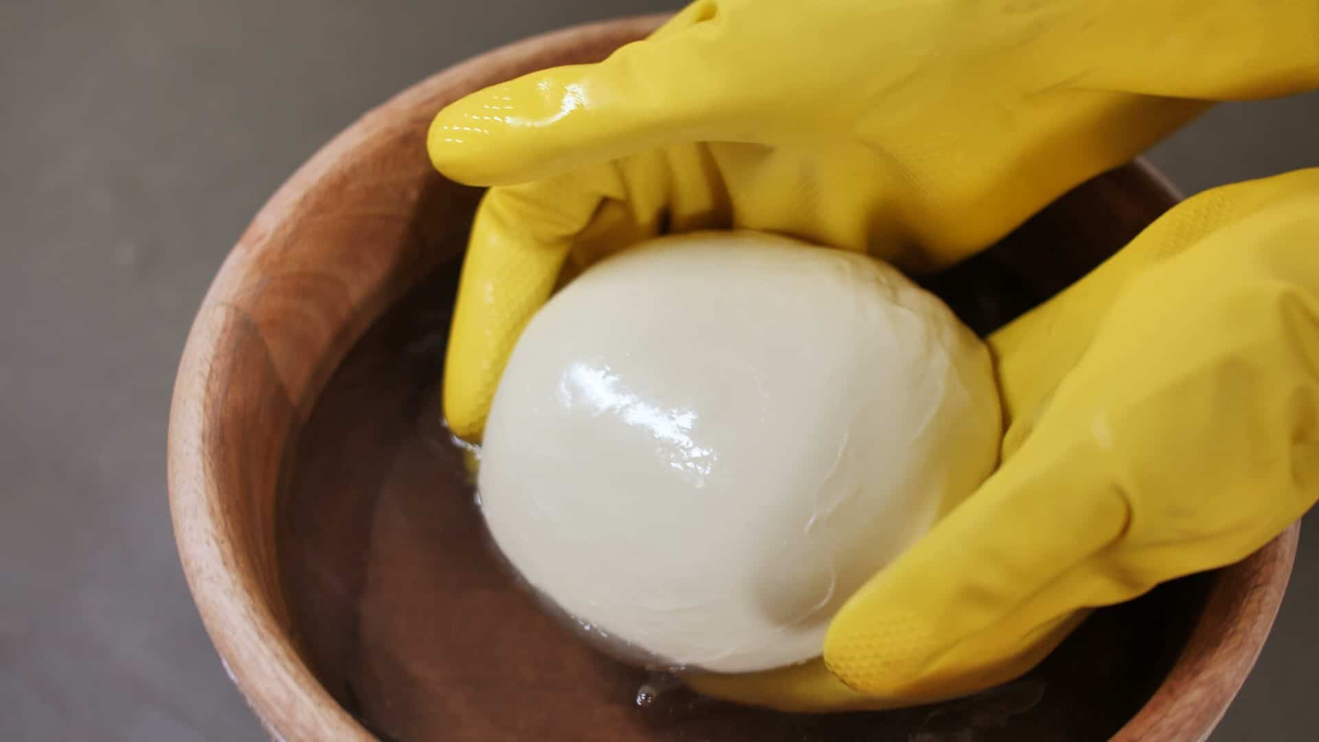 Placing the Homemade Mozzarella Cheese in Water