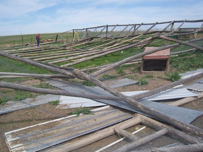Our big summer project: Dismantling some old pheasant pens and building corrals in their place