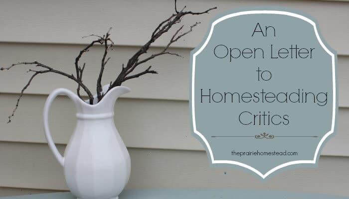Dear Homesteading Critic… (an open letter)