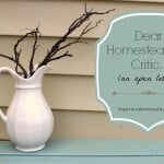Dear Homesteading Critic… (an open letter)