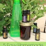 No Diffuser Required! 5 Room Spritzer Recipes (w/ Free Printable!)