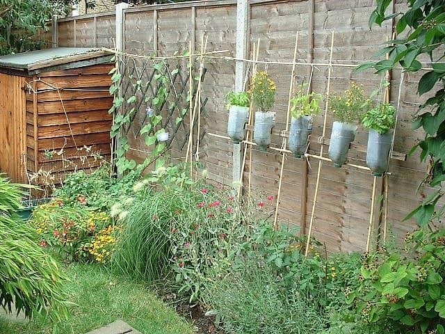 A creative vertical garden