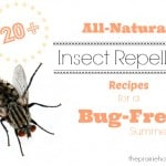20+ All-Natural Insect Repellent Recipes for a Bug-Free Summer