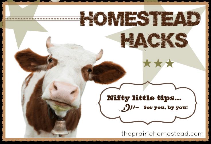 homestead tips