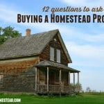12 Questions to Ask Before Buying Homestead Property