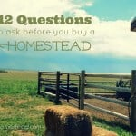12 Questions to Ask Before You Buy a Homestead Property