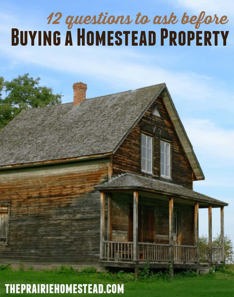 12 Questions to Ask Before Buying Homestead Property • The Prairie