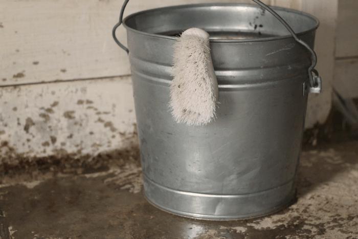 clean chicken coop without bleach