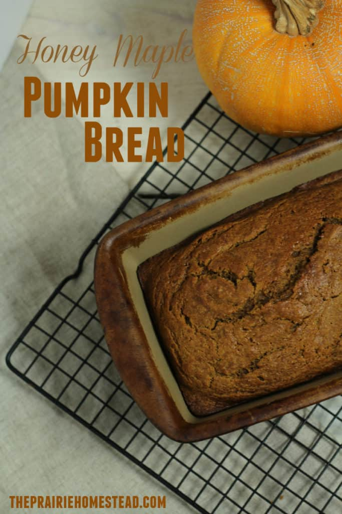 Honey Maple Pumpkin Bread Recipe. A wholesome pumpkin bread recipe made with maple syrup and honey instead of refined sugar!