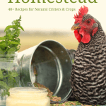 It's Here!! My NEW eBook– Natural Homestead!