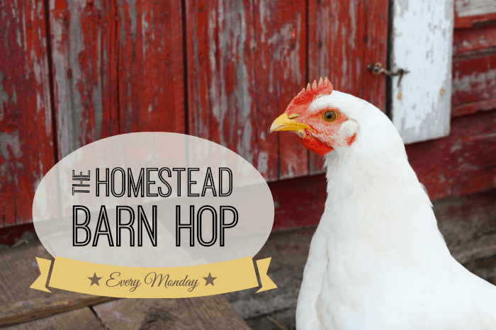 homestead barn hop linky