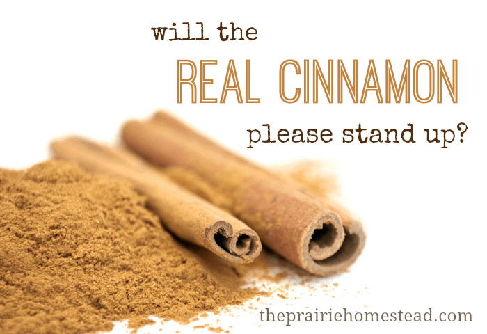 Will the REAL Cinnamon Please Stand Up