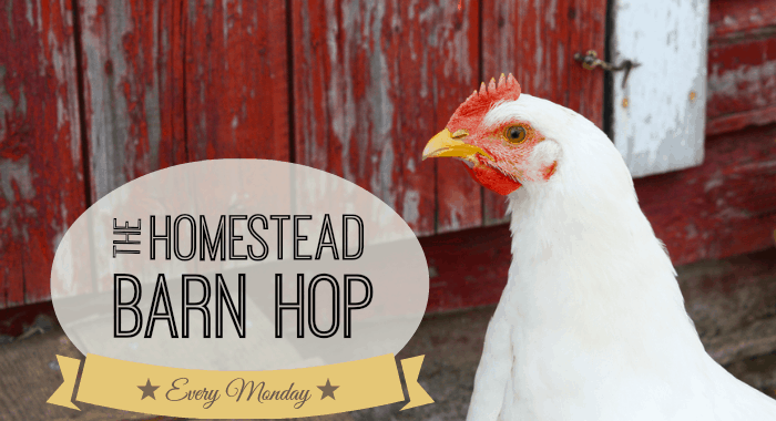 Homestead Barn Hop #186 – End of an Era