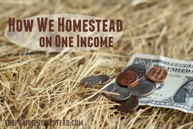 how to homestead on one income