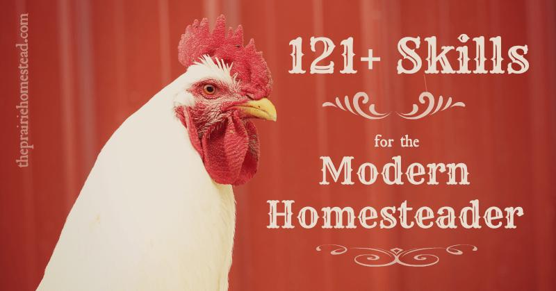 homestead skills