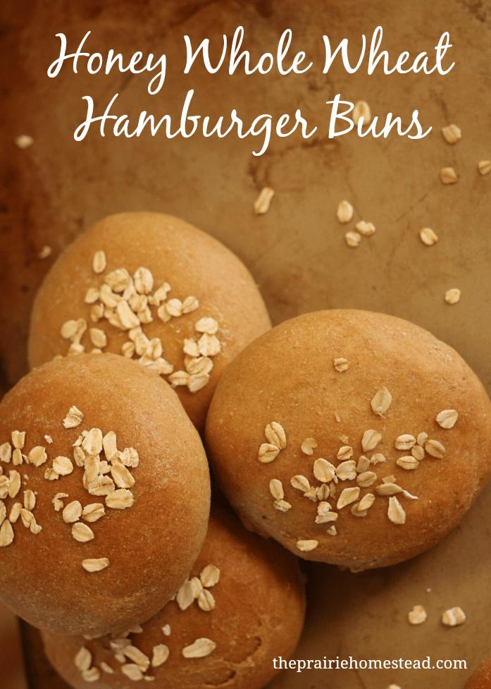 whole wheat bun recipe