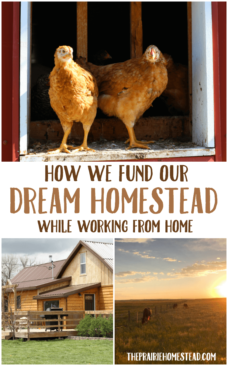 how we have afforded to build out dream homestead while working from home