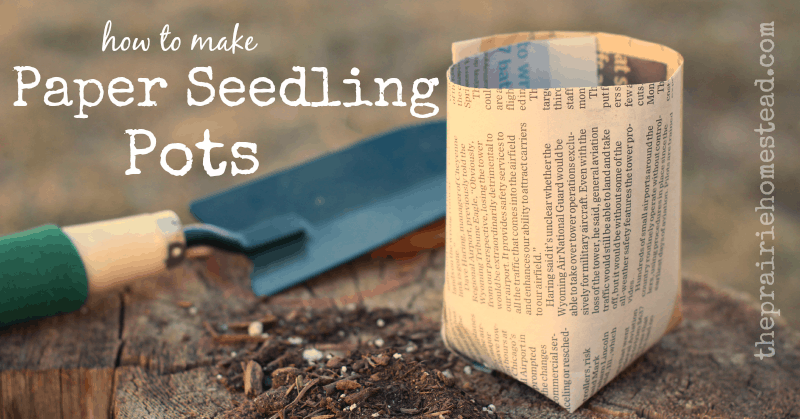 Diy Paper Seedling Pots The Prairie Homestead